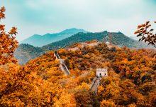 china drijft de grondstofprijzen op