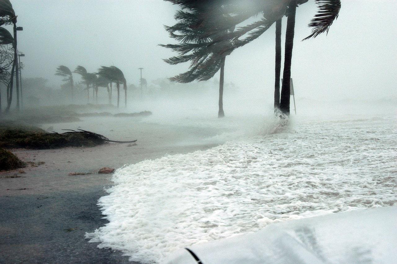 orkaan ida
